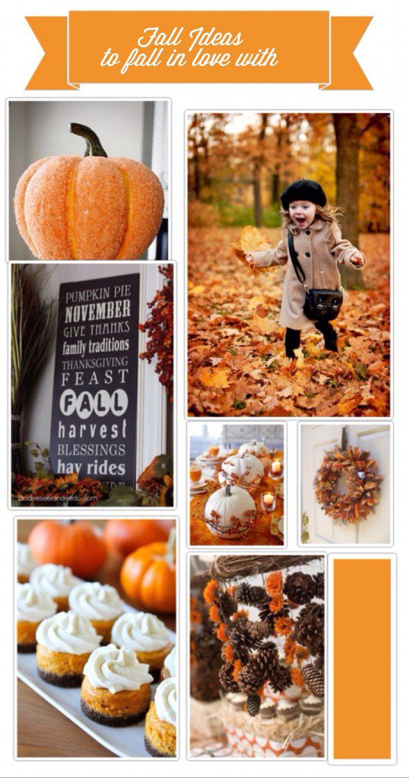 Fall Ideas to fall in Love With www.frostedevents.com Fall Autumn inspiration