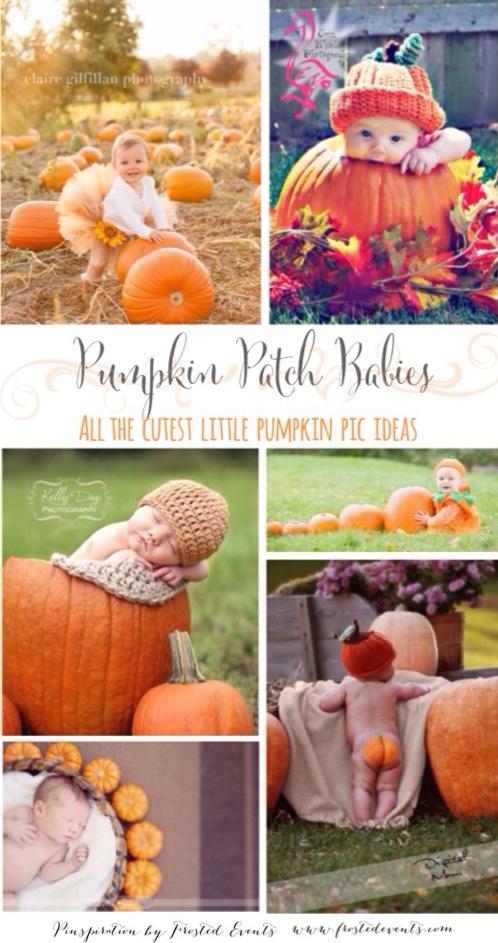 Pumpkin Patch Babies! Ideas and Inspiration for Cute Pumpkin Patch Baby Photos Pics www.frostedevents.com