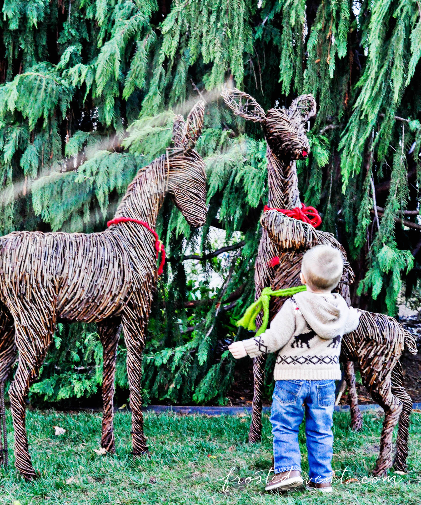 national-botanic-gardens-christmas-2015-washington-dc-family-travel-4