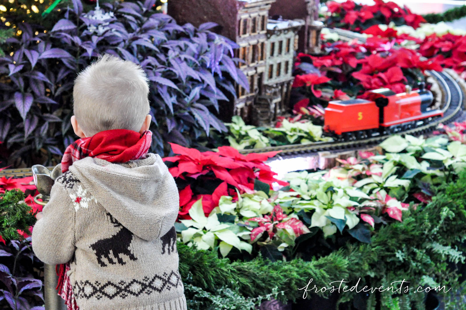national-botanical-gardens-christmas-2015-washington-dc-family-travel-11