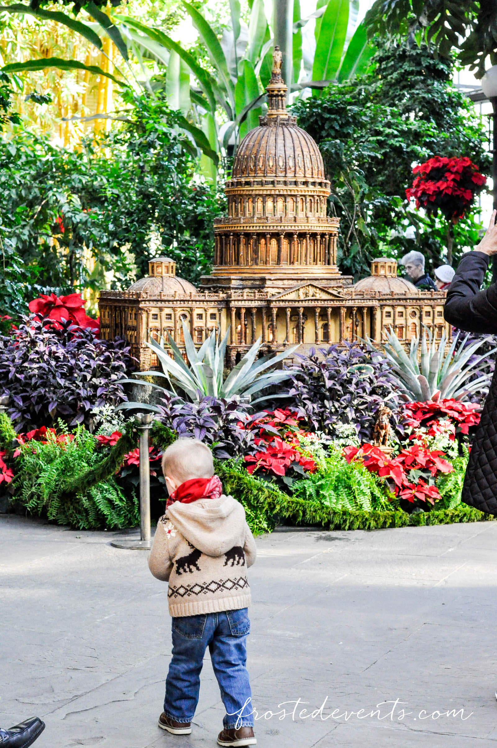 Washington DC Attractions- Christmas at the US Botanic Gardens