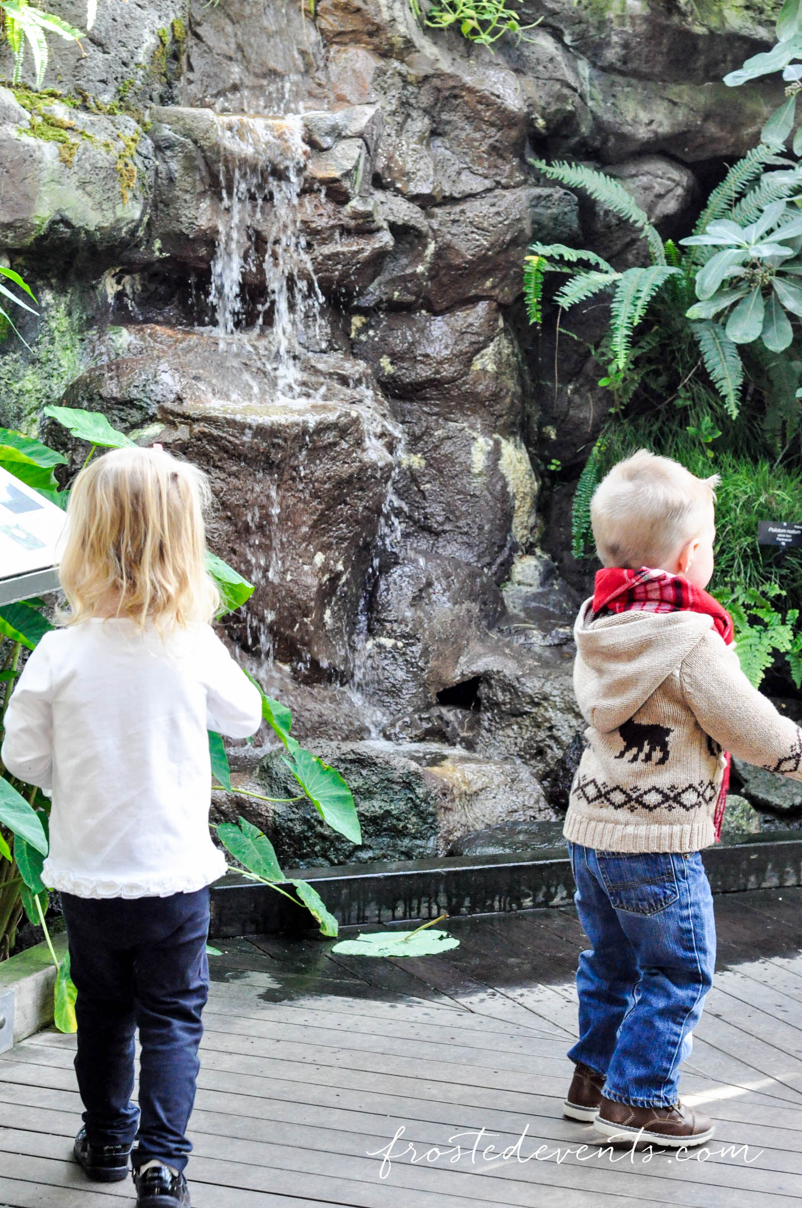 national-botanical-gardens-christmas-2015-washington-dc-family-travel-6