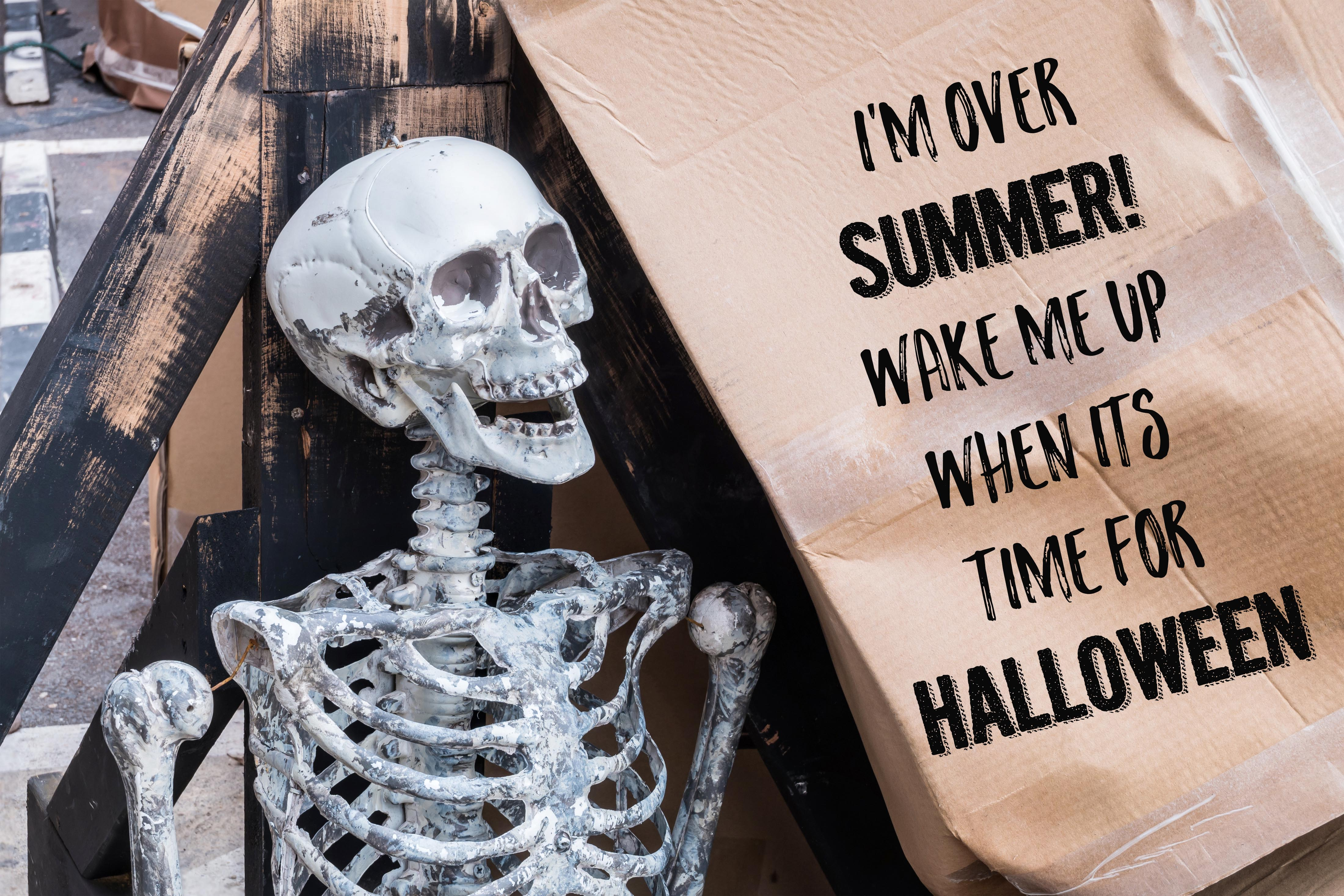 halloween memes hilarious pics to share this hallow day. Black Bedroom Furniture Sets. Home Design Ideas