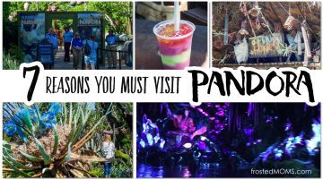 Disney Pandora Avatar World Animal Kingdom Walt Disney World Resorts Disney family vacation via mom blogger Misty Nelson family travel blog #WDWresorts #visitPandora