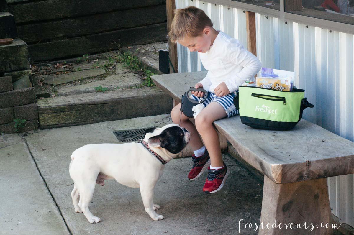fresh-pet-dog-food-frostedevents-misty-nelson-blogger-influencer