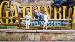 Gatlinburg Tennessee Fun Things to Do in Gatlinburg, TN With Kids - Gatlinburg attractions and family friendly places via Misty Nelson travel blogger, family travel blog @frostedevents