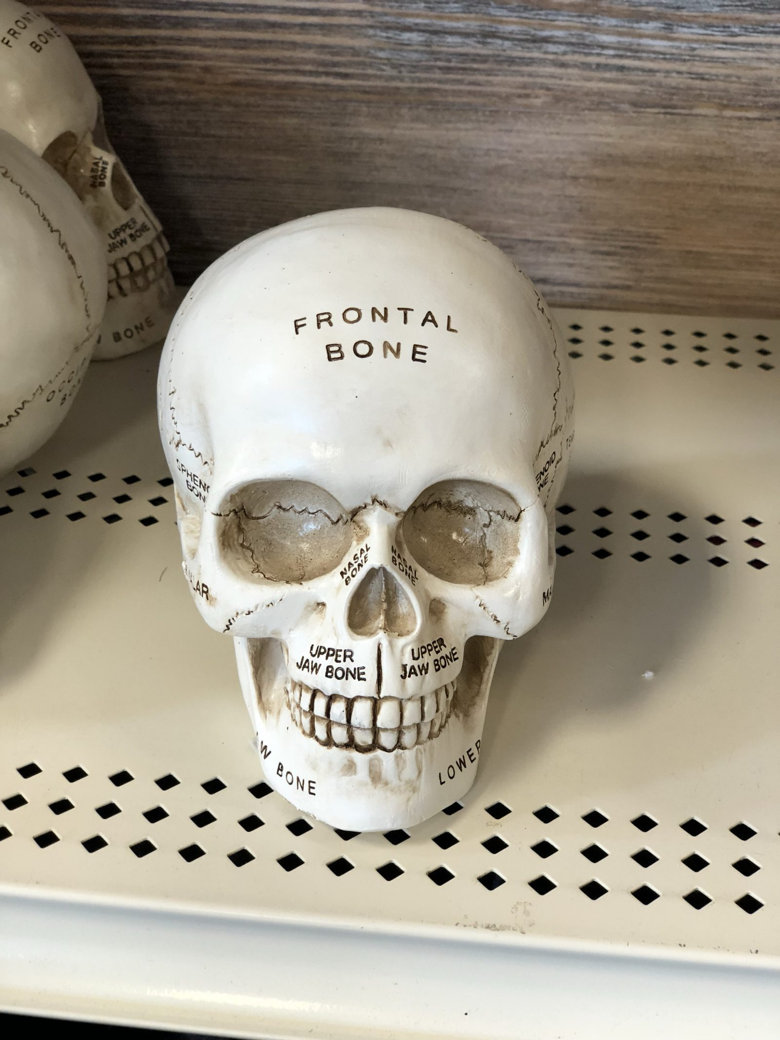 Michaels Halloween Decor - Early Peek at Halloween Decorations