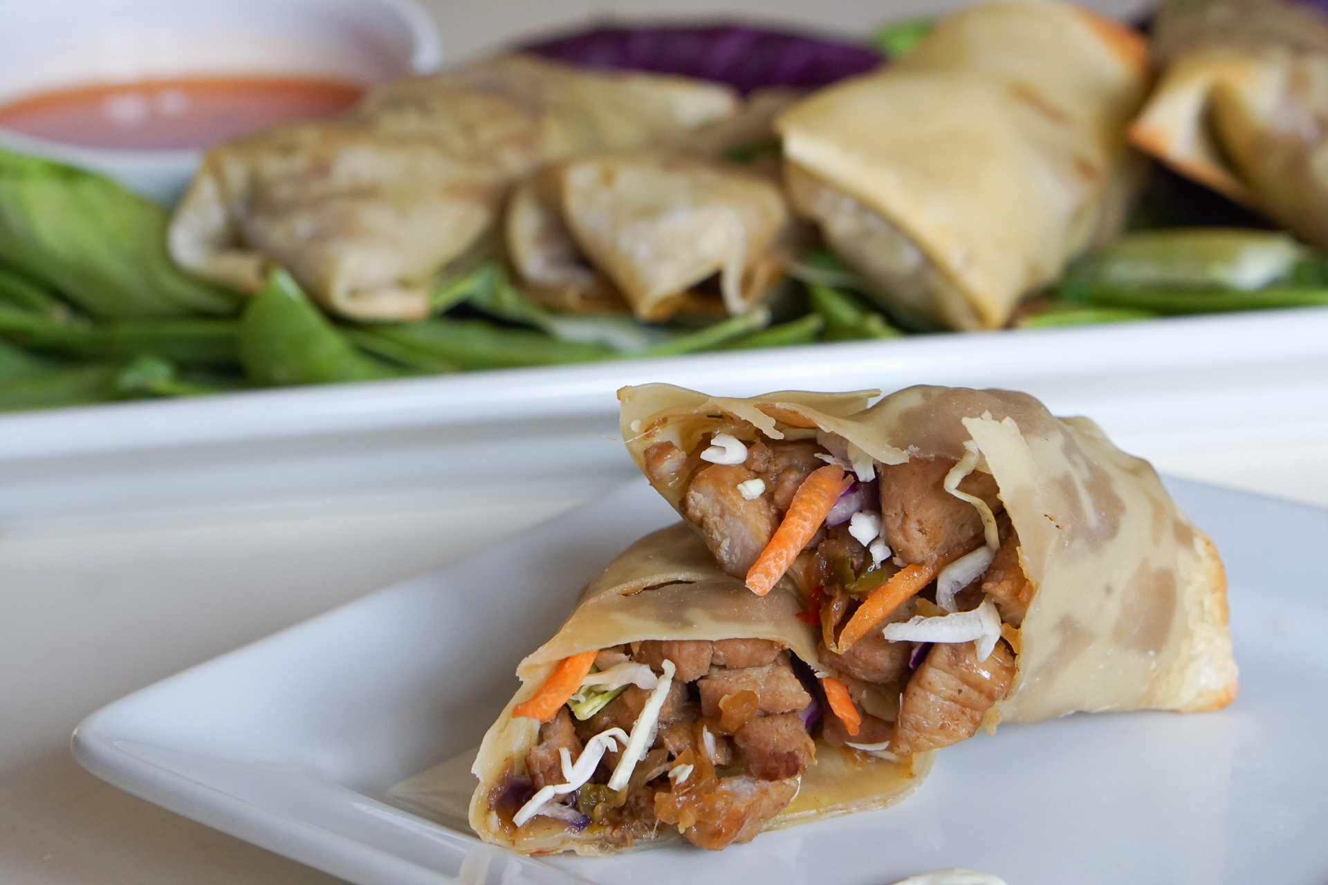 Crispy Pork and Vegetable Spring Rolls
