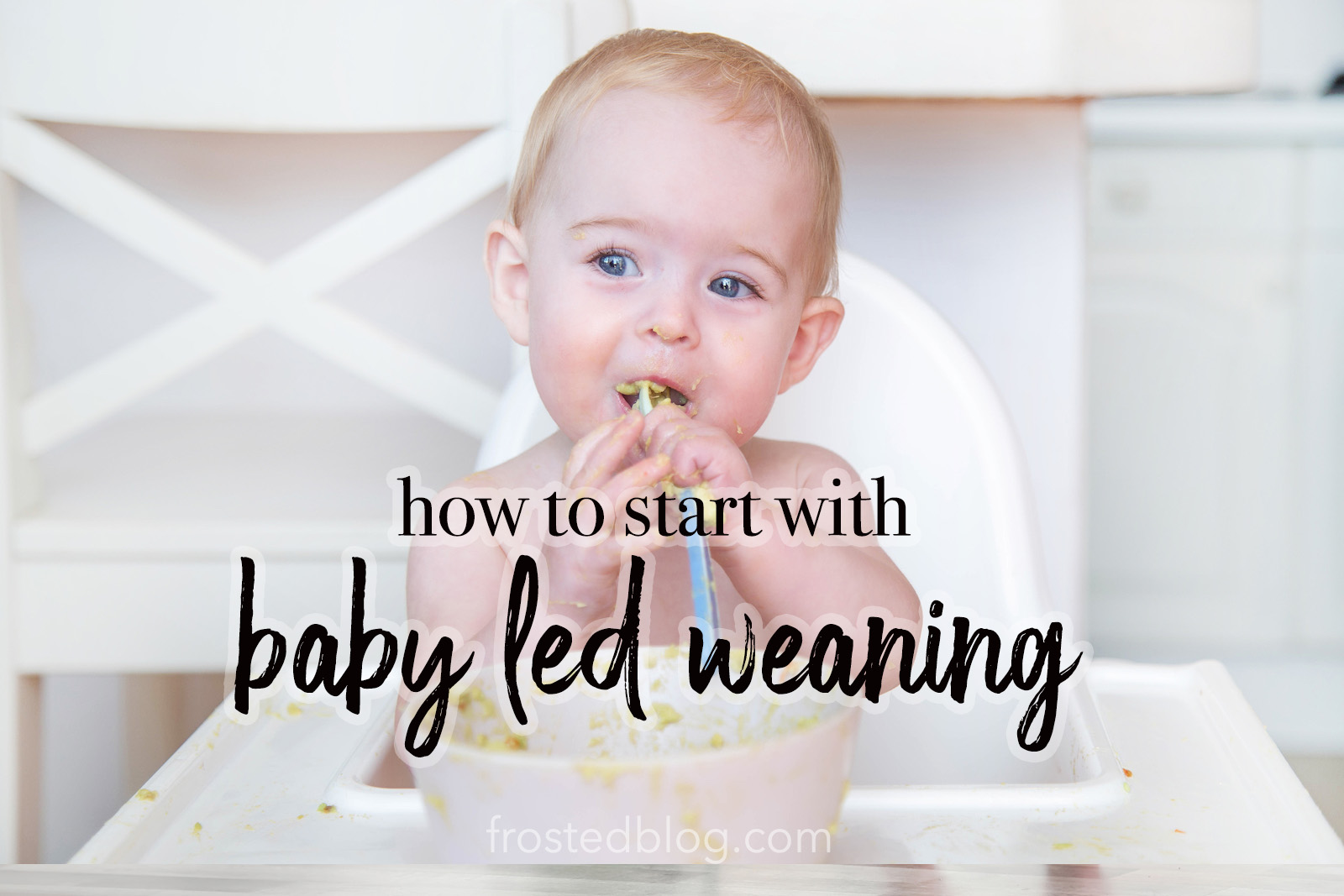 Baby led weaning foods and when to start blw