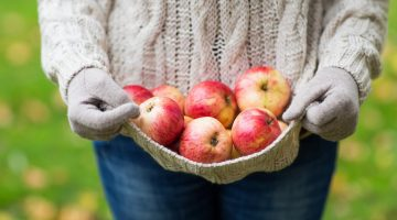 Apple Orchard near me - where to pick apples and apple recipes