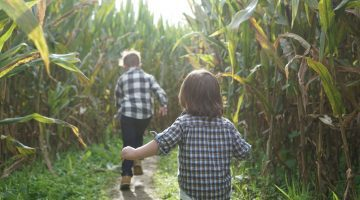 Corn Maze NC - Pumpkin Patches and Fall Things to Do - North Carolina - Alpha and Omega